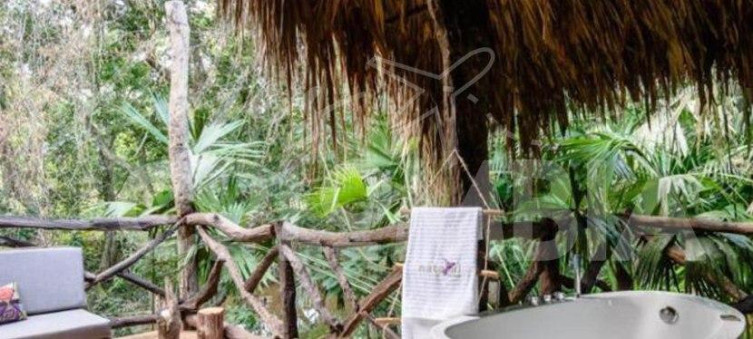 Plan de Desconexión en PuertoTriunfo